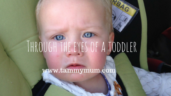 Through the eyes of a toddler