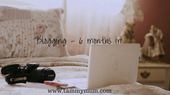Blogging – 6 months in.