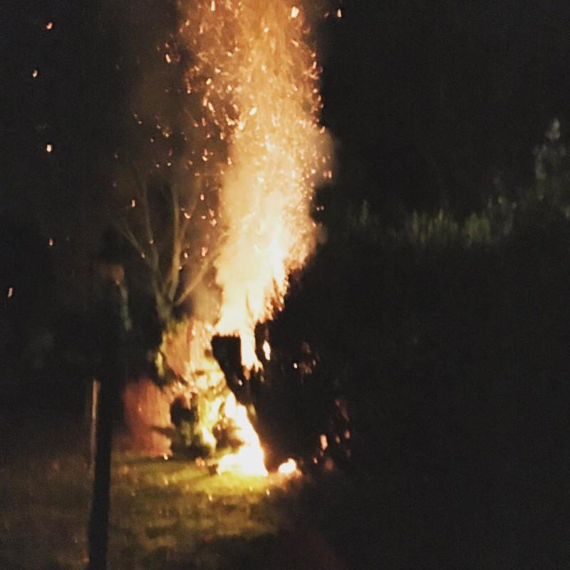 fire in back garden