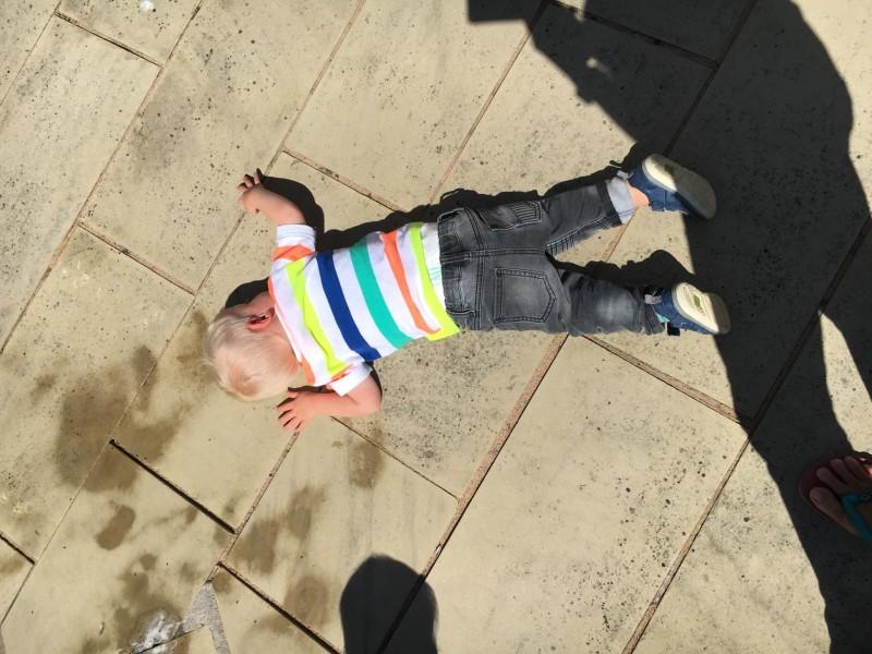 Toby on the floor