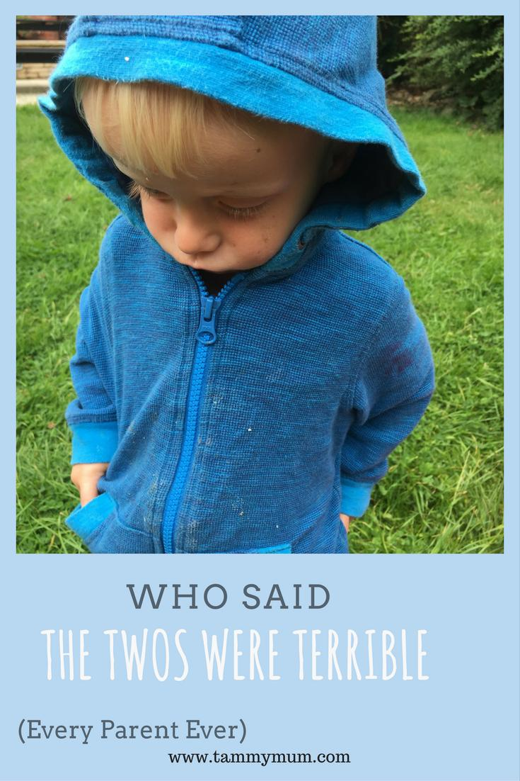 Who Said The Twos Were Terrible? Every parent ever. A post about the highs and lows, mostly lows, of raising two year olds. From tantrums to stubbornness. Laugh or cry people laugh or cry.